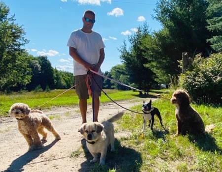 Ultimate Companion Dog Training Michigan