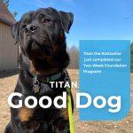 Titan Rottweiler Dog Training Graduate